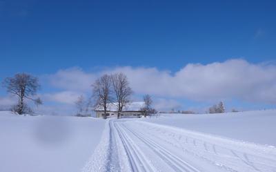 Ambiance ski de fond