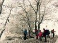 Froid, froid... La pause fut un peu longue, vite filons avant d'être transformés en statue de glace!